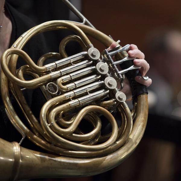 musico tocando el corno
