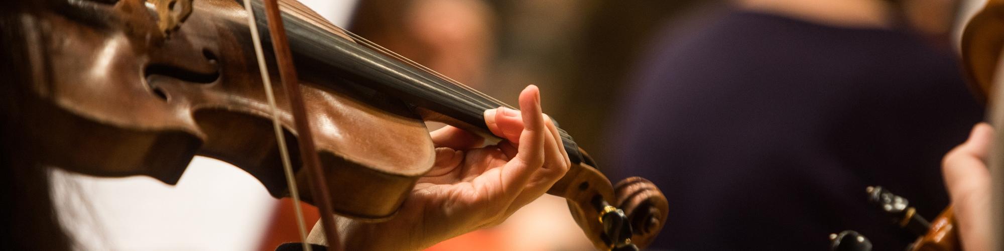 musico tocando violin